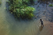 A boy walking in the shallow waters of the Bharatha river